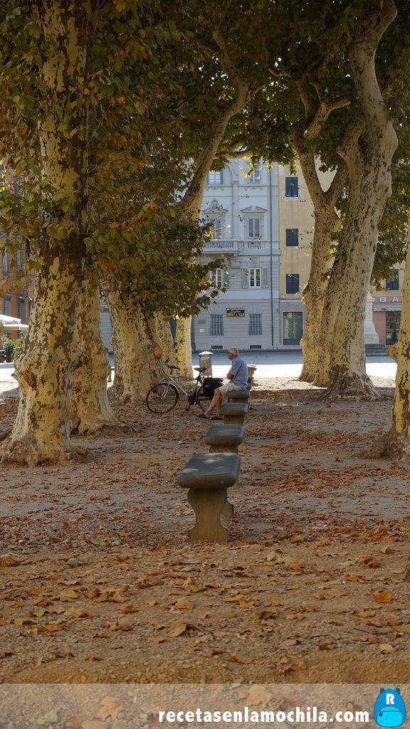 Alrededores de la Plaza de Napoleón en Lucca